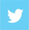Twitter Blue Groep
